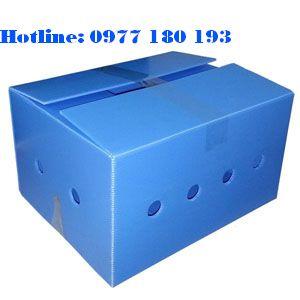 Thùng nhựa danpla thường màu xanh Kích thước: Làm theo yêu cầu.